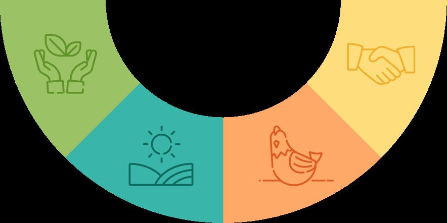 Les piliers de notre engagement coopératif en tant que fournisseur de volaille