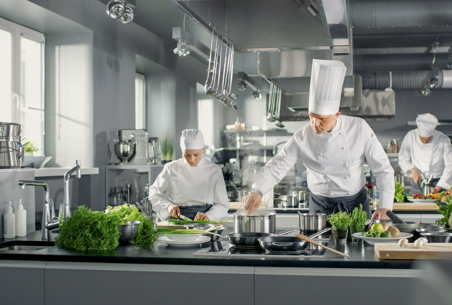 Gastronome Professionnels, c'est des Gammes pour les professionnels de la restauration